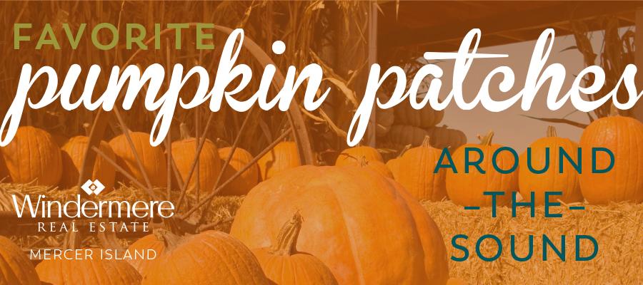 PumpkinPatches.jpg